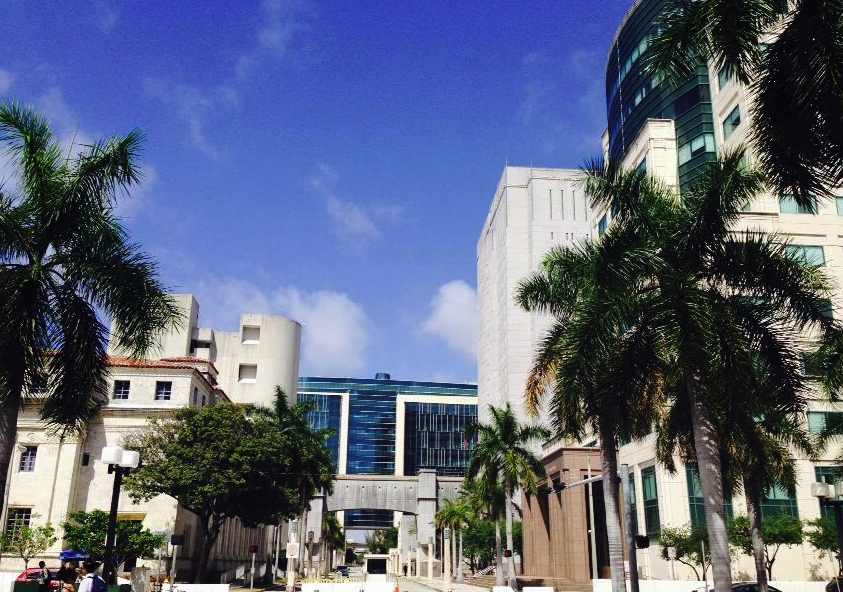 Otorgan al Miami Dade College $3 millones de subvención First in the World para impulsar innovación en enseñanza universitaria